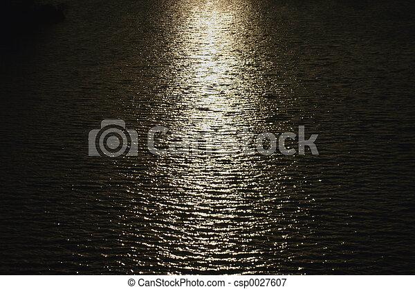 reflections - csp0027607