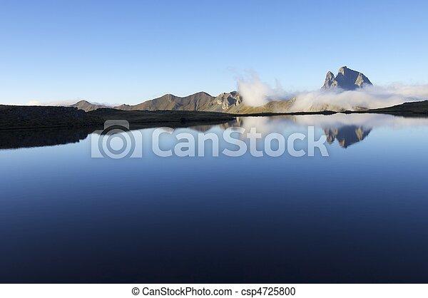 reflections - csp4725800
