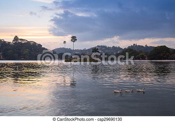 reflet, arbre, lac, pin, pang, ung - csp29690130