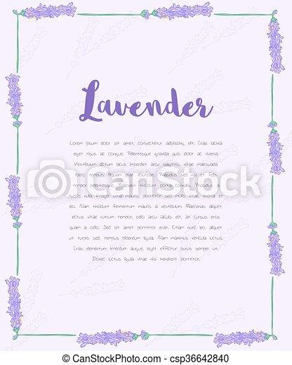 Diseño en blanco para invitación o vale de regalo con marco de lavanda - csp36642840