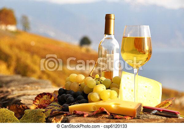 Un vaso de vino blanco y ajedrez en la viña de la terraza de Lavaux, Suiza - csp6120133