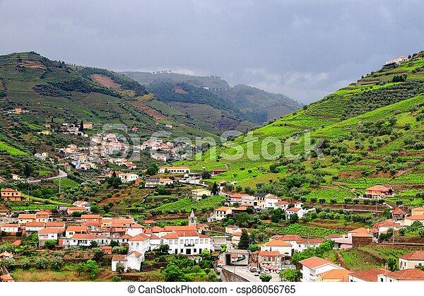 Regua landscape, Douro DOC - csp86056765