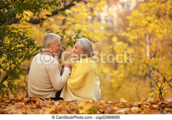 reizend, paar, senioren - csp22968690
