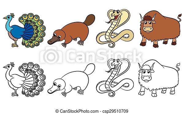 Reizend, tiere, sammlung, zoo. Reizend, färbung, tiere, illustration ...