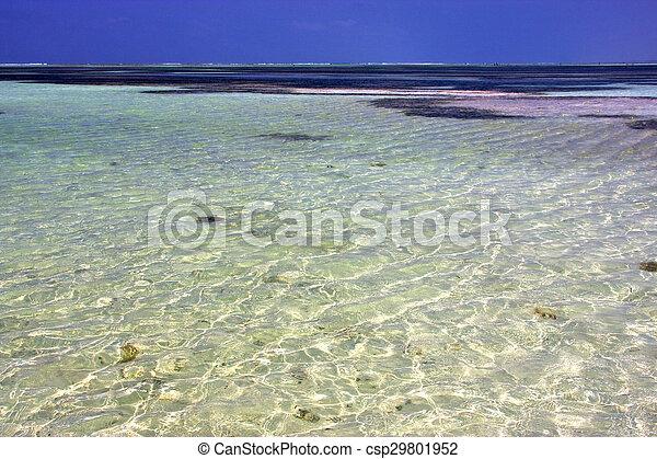 Espuma de espuma de la costa de África en el tranquilo Zanzíbar - csp29801952