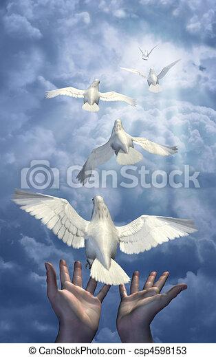Releasing the Doves - csp4598153