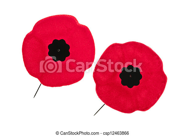 Remembrance day poppies two red poppy lapel pins for remembrance day remembrance day poppies csp12463866 mightylinksfo