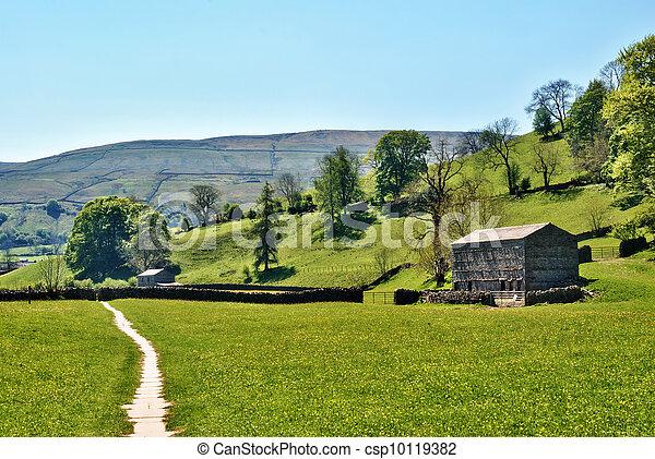 Remote farm track in Yorkshire Dales - csp10119382