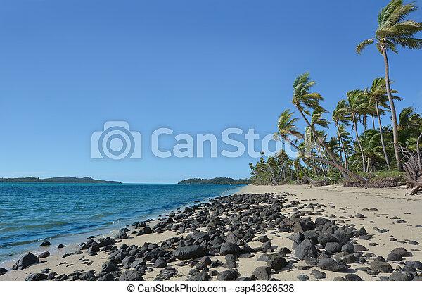 remoto, spiaggia, isola tropicale, selvatico, figi, paesaggio - csp43926538