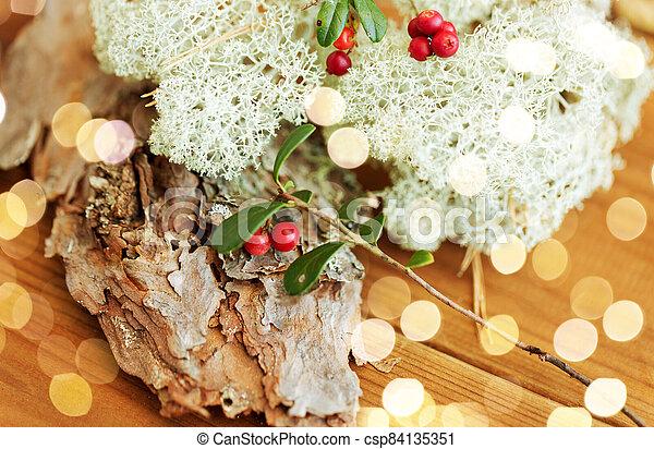 reno, encima de cierre, cowberry, liquen, musgo - csp84135351