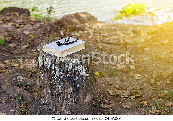 reposer, park., livres, lunettes, banc - csp42462022