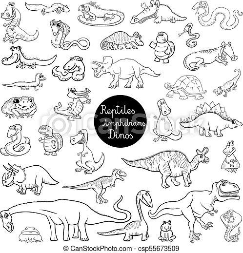 Reptiles And Amphibians Set Color Book