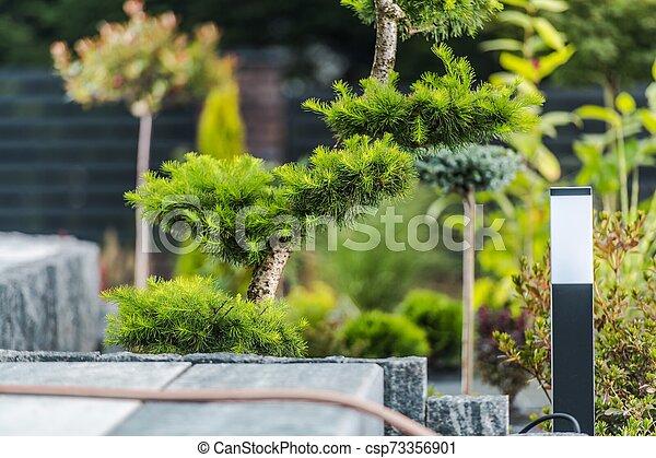 Residential Backyard Garden - csp73356901