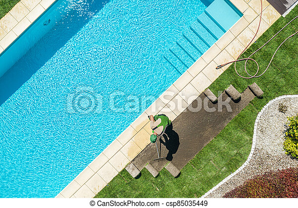 Residential Backyard Garden with Pool New Natural Grass Installation - csp85035449