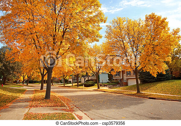 Residential Neighborhood in Autumn - csp3579356