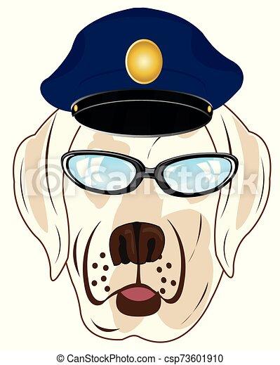Retrato del perro con sombrero y gafas - csp73601910