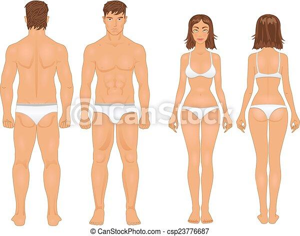 retro, sain, type, femme homme, couleurs, corps - csp23776687