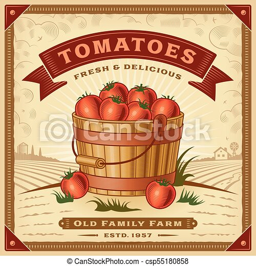Retro tomato harvest label with landscape - csp55180858