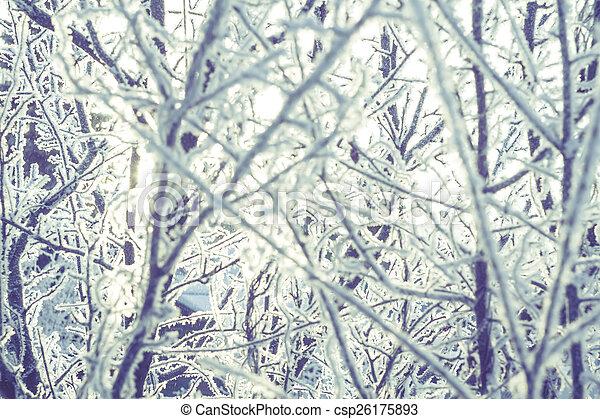 Retro Trees in Hoarfrost - csp26175893