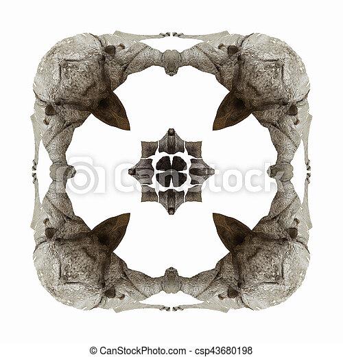 rhinoceros abstract 1 - csp43680198