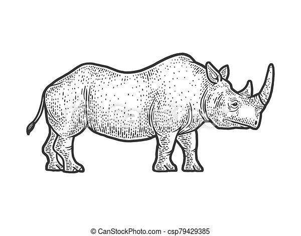 rhinoceros sketch engraving vector illustration. T-shirt apparel print design. Scratch board imitation. Black and white hand drawn image. - csp79429385