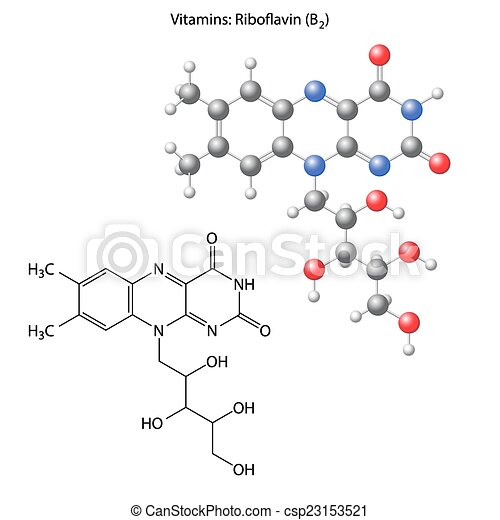 Riboflavin - Vitamin B1 - csp23153521