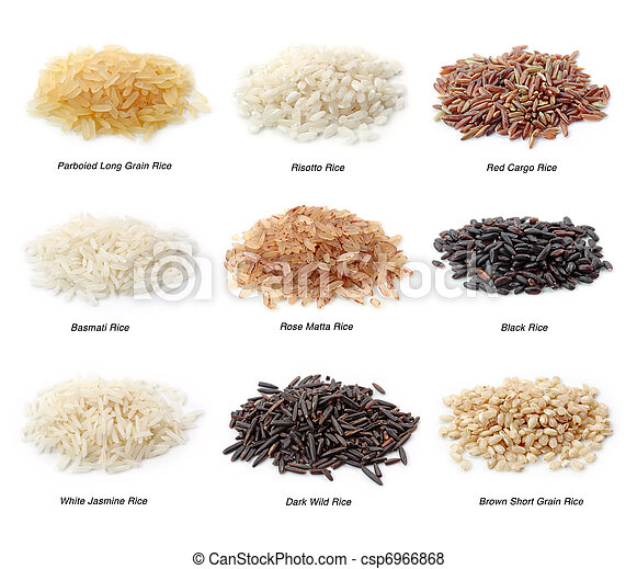 Rice collection - csp6966868