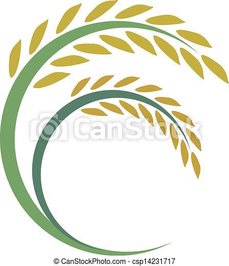 Rice design on white background - csp14231717