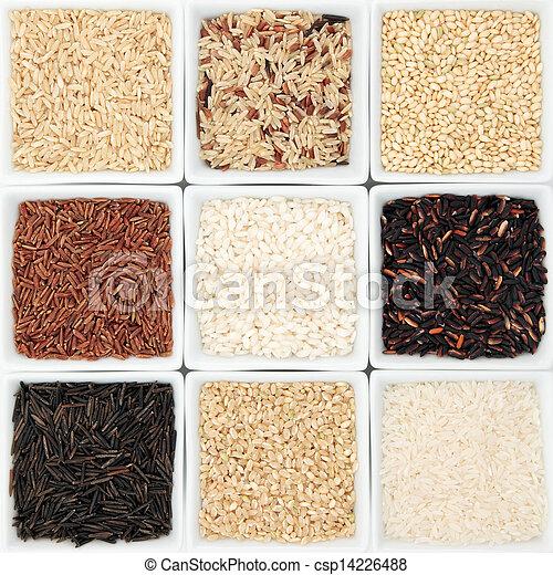 Rice Grain Varieties - csp14226488
