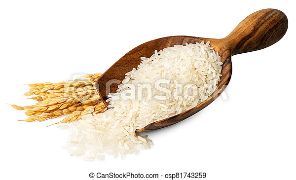 rice in wooden scoop isolated - csp81743259