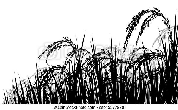 Farmer Harvest Rice Vector Design Royalty Free Cliparts, Vectors, And Stock  Illustration. Image 63370667.