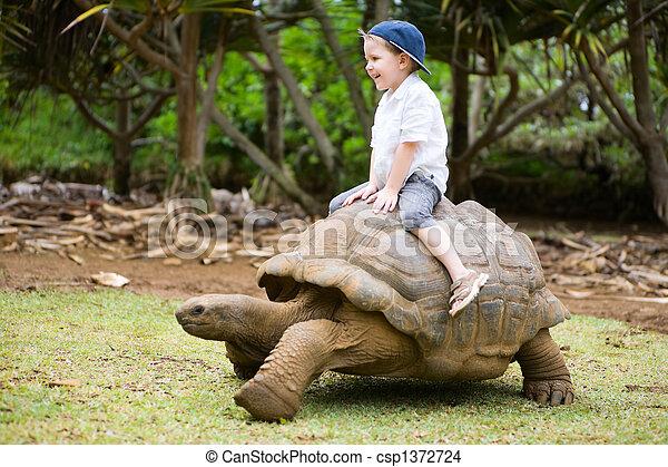 Riding Giant Turtle - csp1372724