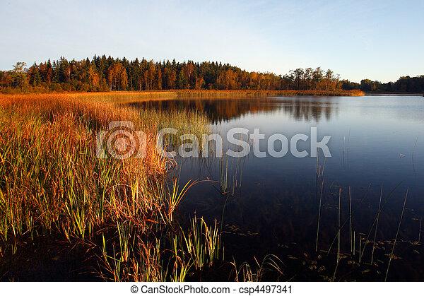 riflessione, alba, lago - csp4497341