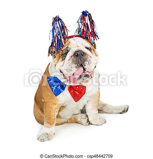 rigolote, chien, américain, quatrième, patriotique, juillet - csp48442709