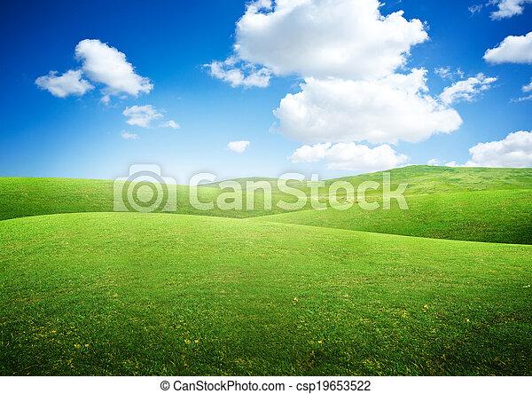 rimbombante, campi, verde - csp19653522