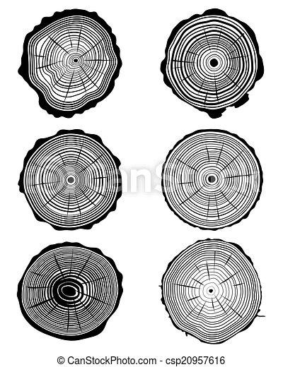 rings 2 - csp20957616