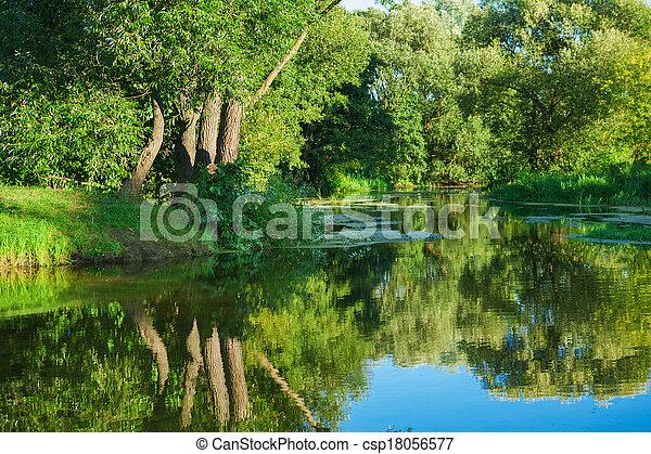 rio, floresta - csp18056577
