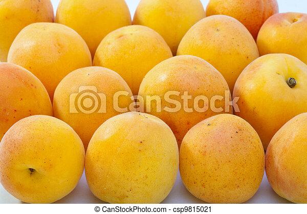 Ripe apricots - csp9815021
