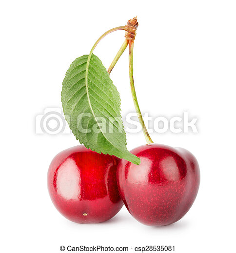 Ripe cherries on branch with leaves - csp28535081