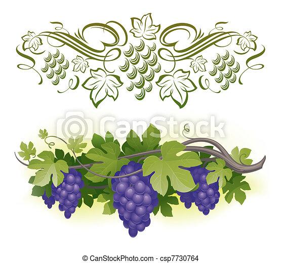 Ripe grapes on the vine & decorarative calligraphic vine - vector illustration - csp7730764