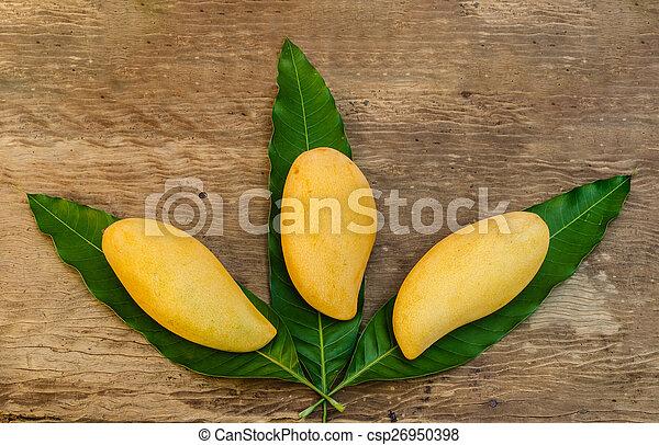 ripe mangoes - csp26950398