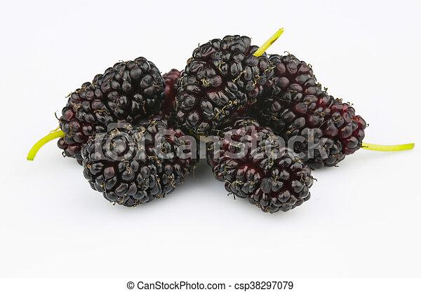 Ripe mulberry - csp38297079