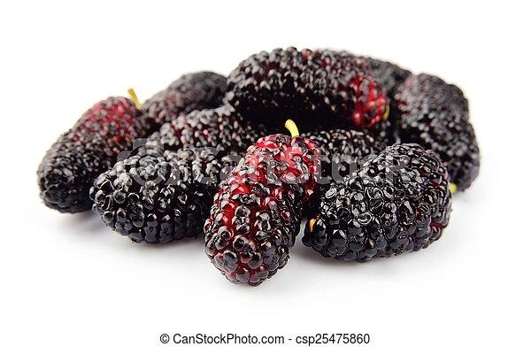 Ripe mulberry - csp25475860