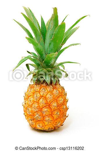 Ripe Pineapple Fruit - csp13116202