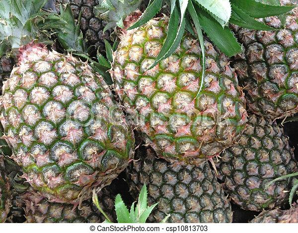 ripe pineapple - csp10813703
