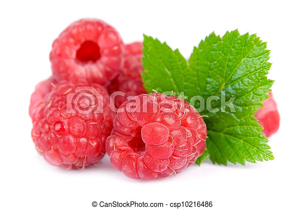 Ripe raspberries with leafs - csp10216486
