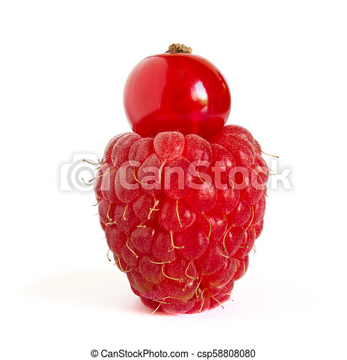 Ripe Raspberry with Red Currant on Top Isolated on the White Background - csp58808080