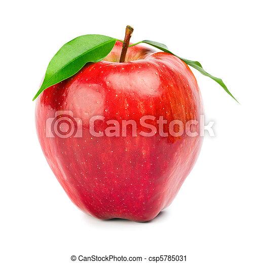 Ripe red apple - csp5785031