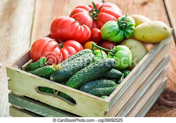 Ripe tomatoes and cucumbers in greenhouse - csp39092525