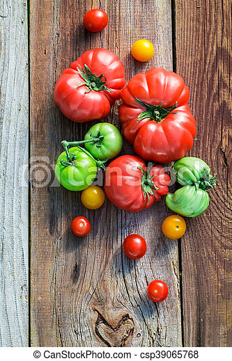 Ripe tomatoes in the countryside - csp39065768
